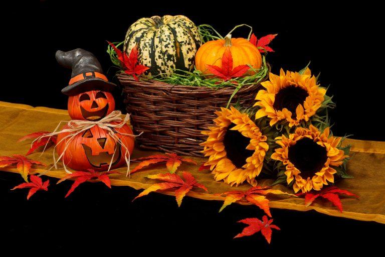 vídeos musicales para halloween